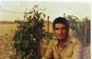 ارسالي علي راحي_21