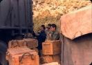 شهید رضا فرزانه_342