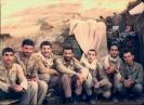 ارسالي علي راحي_4