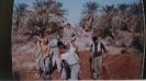 ارسالي علي راحي_9